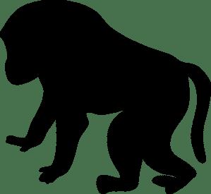 baboon-47367_1280